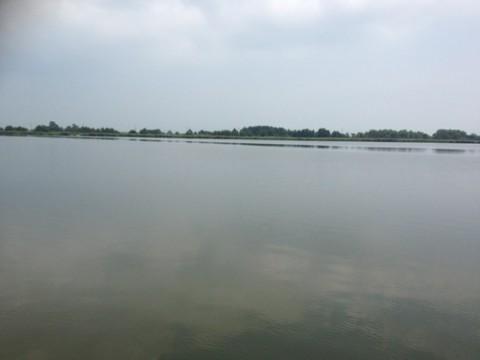 STCブログ写真 2012/07/31