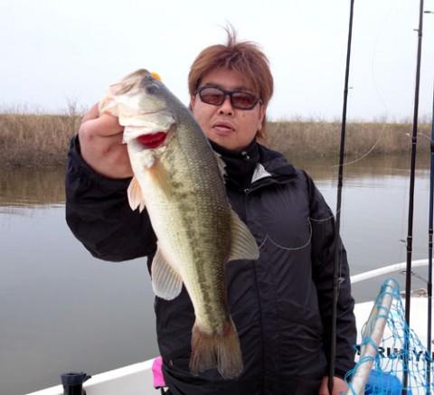 STCブログ写真 2014/04/30
