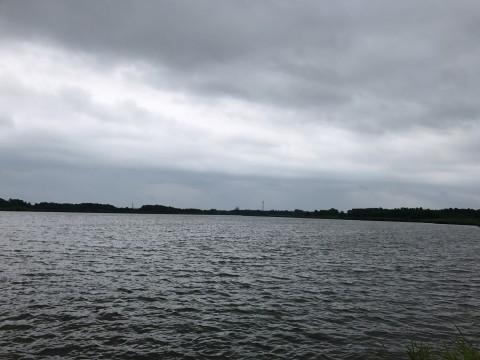 STCブログ写真 2017/07/22