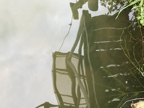 STCブログ写真 2017/08/11