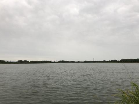 STCブログ写真 2017/08/31